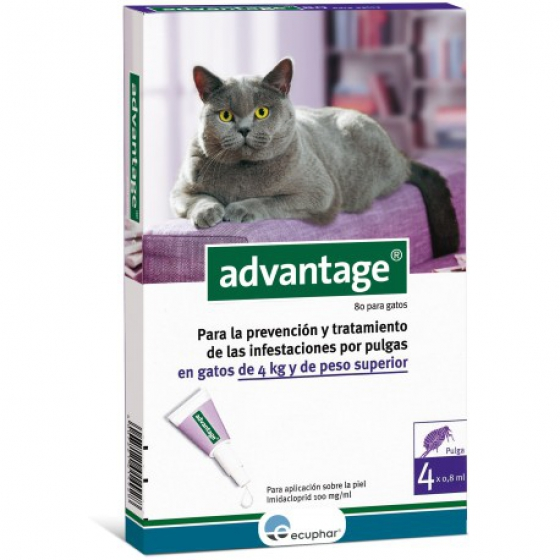 Advantage Gato Sol Uncao 0,8mlx4 4-8kg sol unção punctif VET